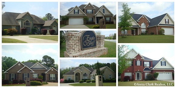 Eagles Bluff Subdivision in Kathleen GA 31047