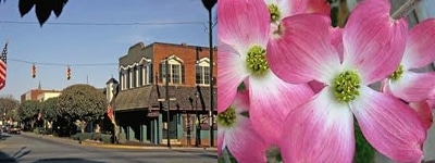 Perry GA Events: 25th Annual Perry Dogwood Festival - April 13-14 2013
